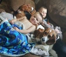 boys-and-beagles2.jpg
